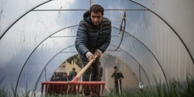 FOTO Solutie pentru oamenii strazii: terapie prin gradinarit