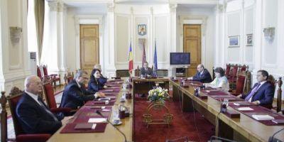 Ce crima a comis Livia Stanciu. Culisele scandalului de la Curtea Constitutionala