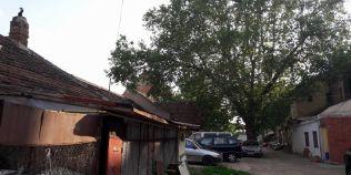 FOTO Am descoperit curtea din Timisoara in care a copilarit faimosul cafegiu Francesco Illy